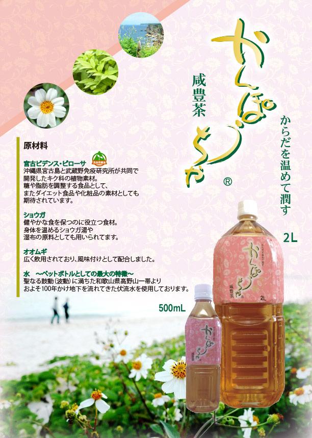 かんぽう茶500ml決定ちらしmuratasan.jpg