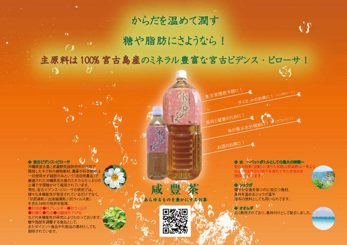 かんぽう茶ペットボトルNEWPOP.jpg